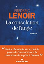 Frédéric Lenoir, La consolation de l'ange